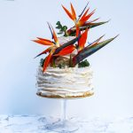 December's Cake Decorator Spotlight