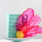 February Cake Decorator Spotlight
